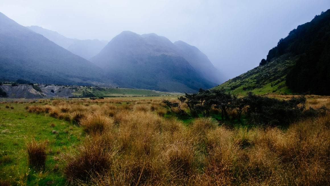 Greenstone Track, New Zealand, Travel Photography, Vin Images