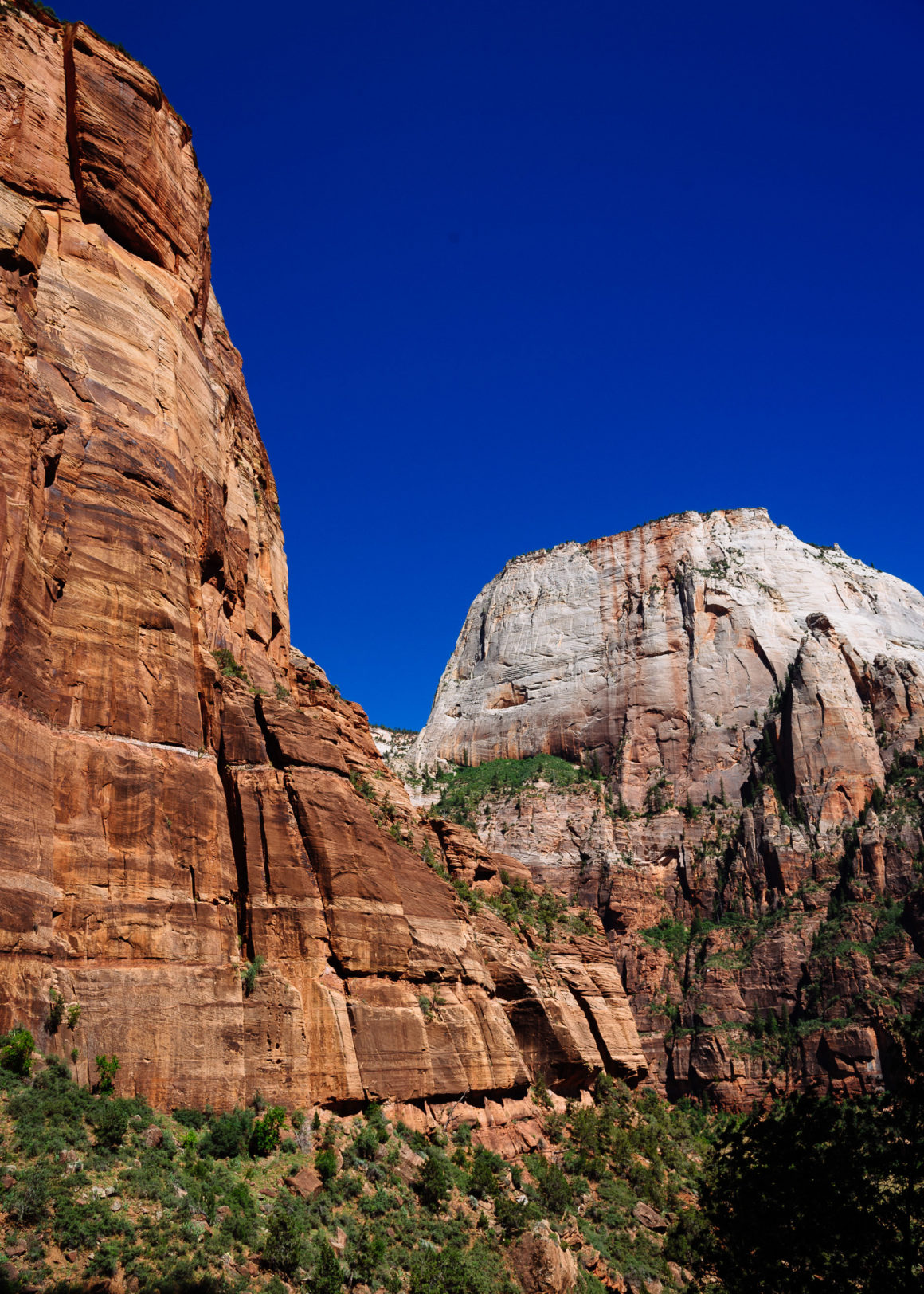 Zion, Travel Photography, U.S.A, Vin Images