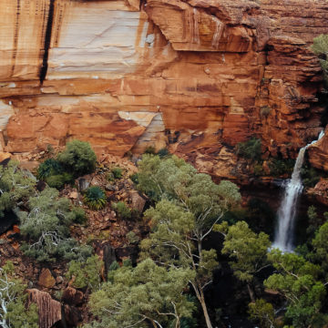 Watarrka National Park, Australia, Travel Photography, Vin Images