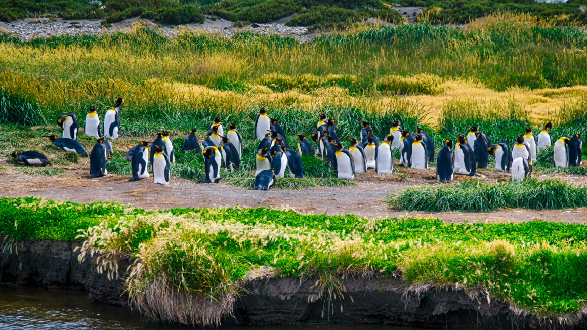 Tierra del Fuego, Chile, Travel Photography, Vin Images